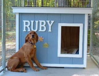 Ruby - Minnesota